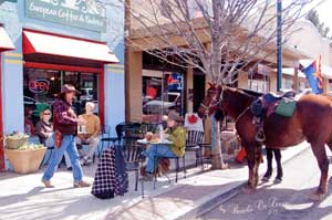 Horses in Old Town - (C) Susie Beach